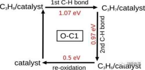 14篇优质Paper帮你理清氧、氮、硼、硫等官能团在催化反应中的作用、机理和规律