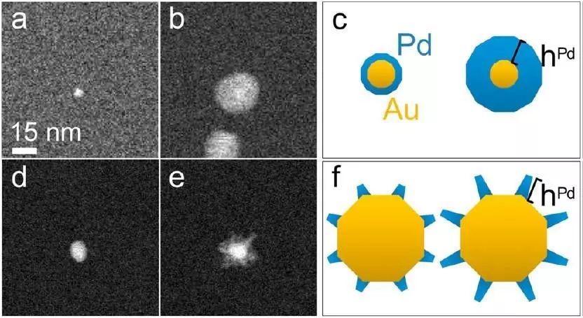 原位液体环境透射电镜技术初相遇