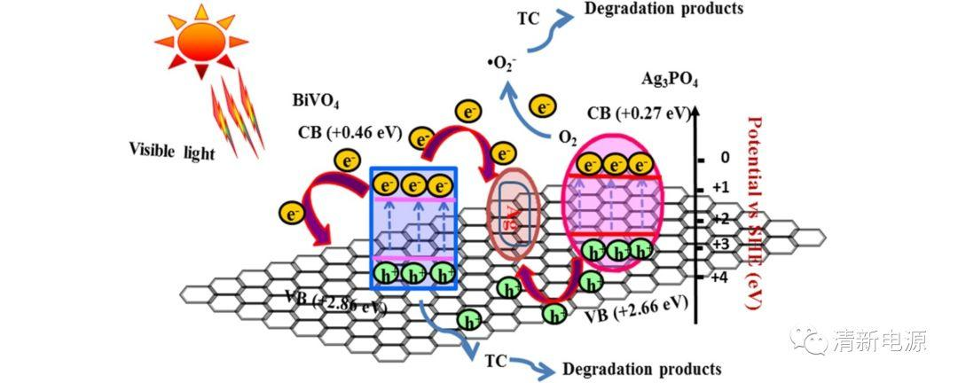近期催化领域高被引有机污染物降解及探测&其他催化主题汇总(限国内)