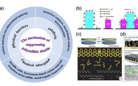 清华深研院 Adv. Fun. Mater. 固态锂硫电池的研究现状和展望