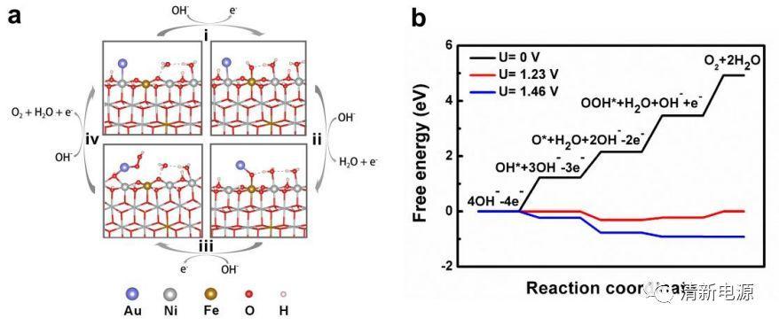 单原子Au/NiFe层状双氢氧化物电催化剂:探索析氧反应活性来源