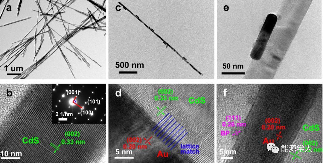 利用黑磷-Au-CdS异质结构中的单向电子传输通道实现全太阳光谱催化产氢