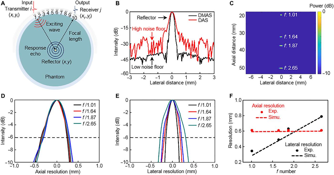 "Science Advances: 柔性电子领域新突破——崎岖表面之下秀出内心之""美"""