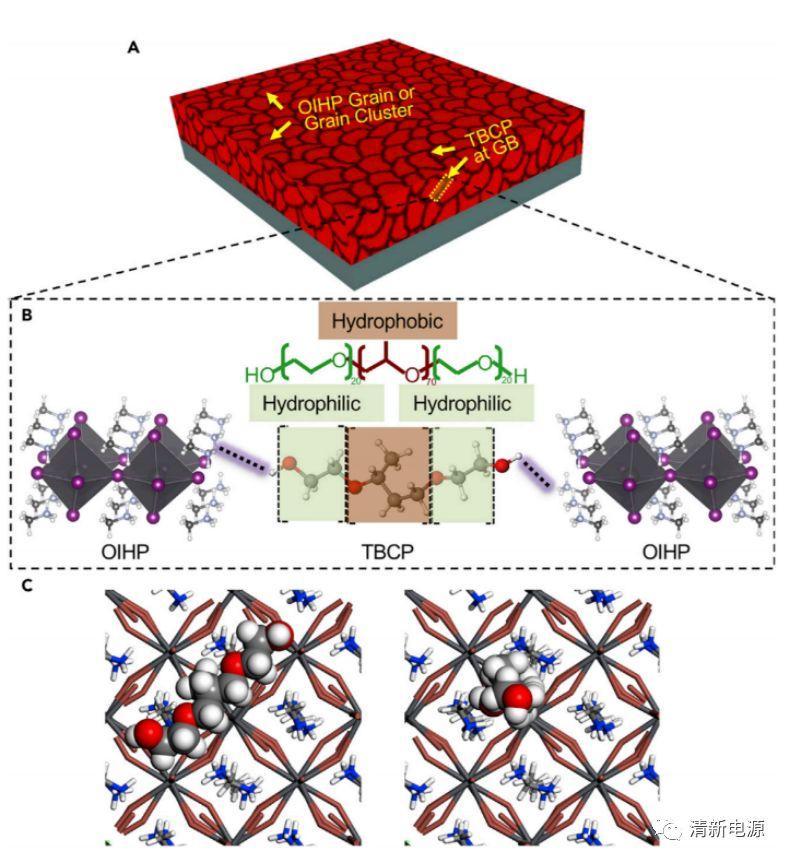 布朗大学 Chem:基于连续晶界功能化的高效稳定钙钛矿太阳能电池