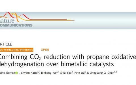 Nature Communication:二氧化碳氧化丙烷脱氢与双金属催化剂的产物选择