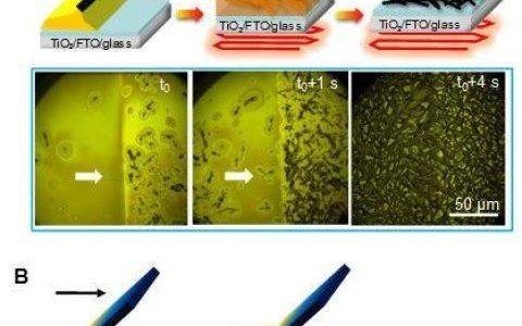 陕西师范大学刘生忠-赵奎团队Joule: 调控相转变刮涂制备高效钙钛矿太阳电池
