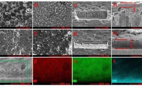 刘平课题组:甲基碳酸锂为金属锂电极表面保护提供新思路