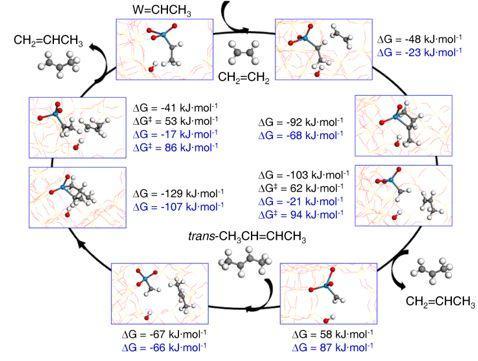 牛津大学曾适之教授团队JACS:分子筛孔道内单原子协同催化