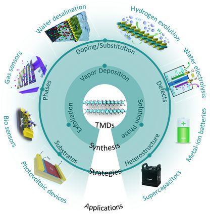 Chem. Soc. Rev.封面文章:TMDs电催化剂的计算模拟及实验制备