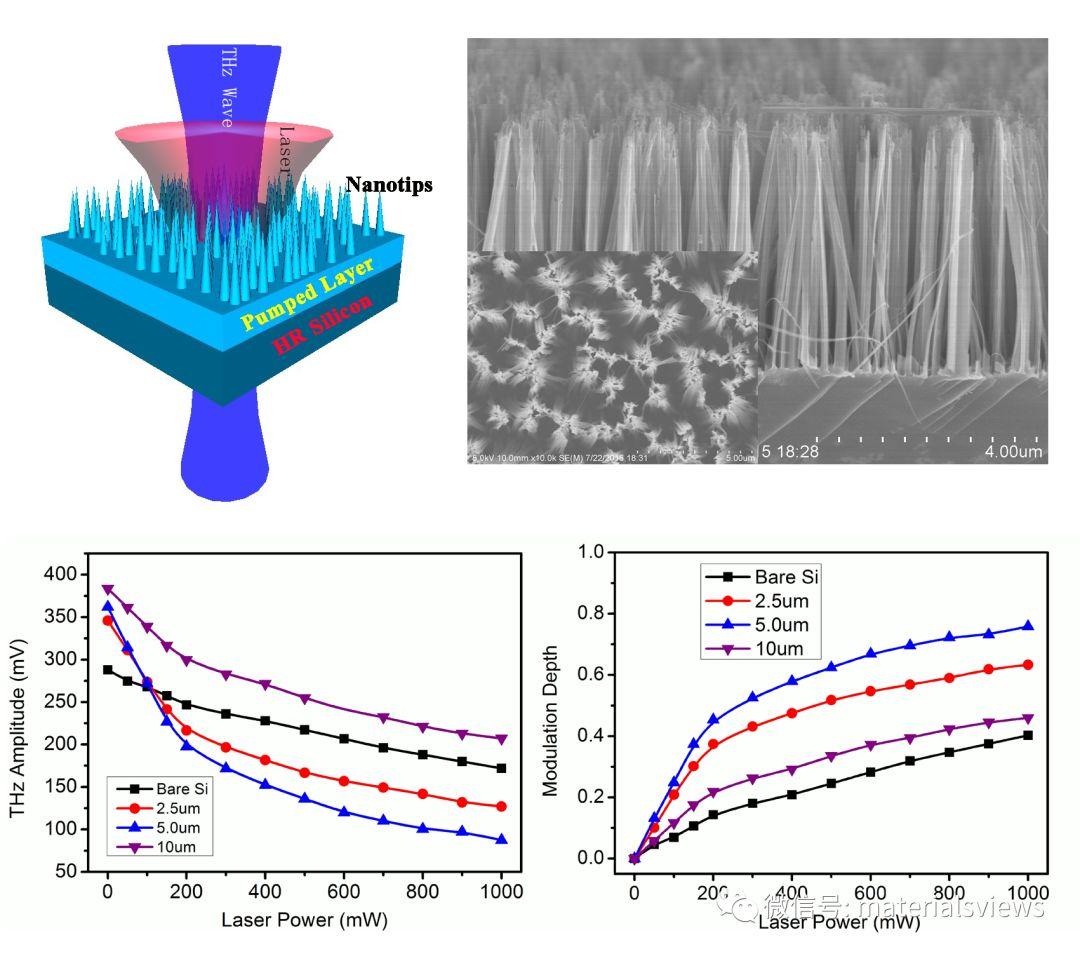 针尖上的华尔兹——硅纳米针阵列实现光控太赫兹波高效调控技术