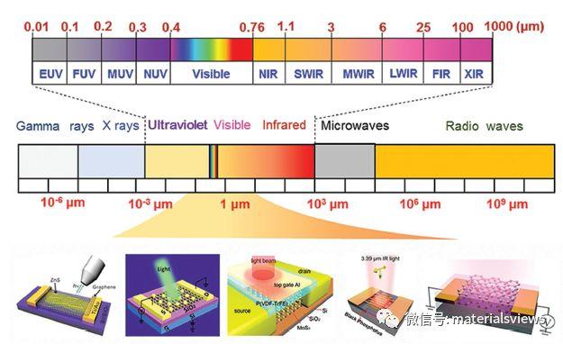 Small综述:基于局域场增强的二维材料光电探测器研究进展