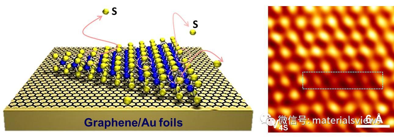 单层二硫化钼中链状硫空位的形成及其电子结构