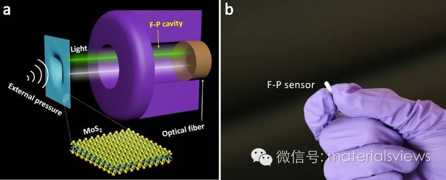 基于二维薄膜的超灵敏声压传感器