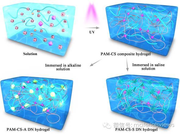 一步浸泡法实现复合水凝胶向高强高韧双网络凝胶的转化