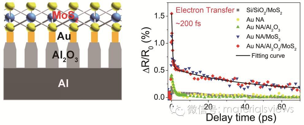 金属-二硫化钼异质结界面等离激元诱导热电子超快特性研究