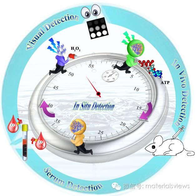 双酶-核壳结构的纳米粒子在ATP-H2O2原位顺序检测及成像中的应用