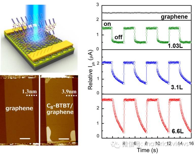 高灵敏度二维有机晶体/石墨烯异质结光电探测器