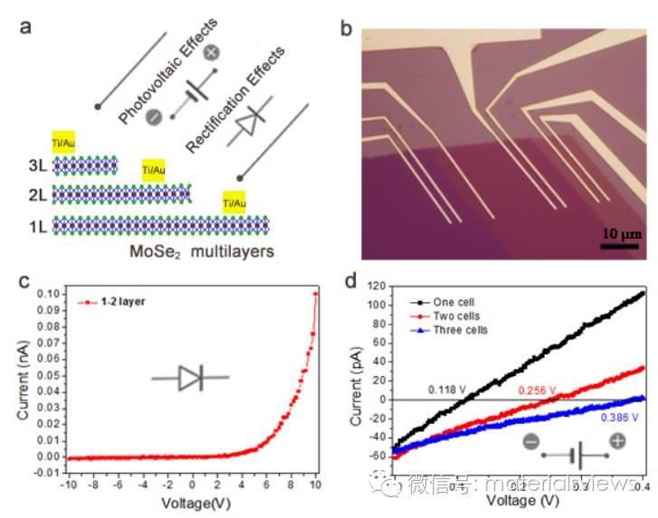 基于层数调控的二维半导体同质结的研究