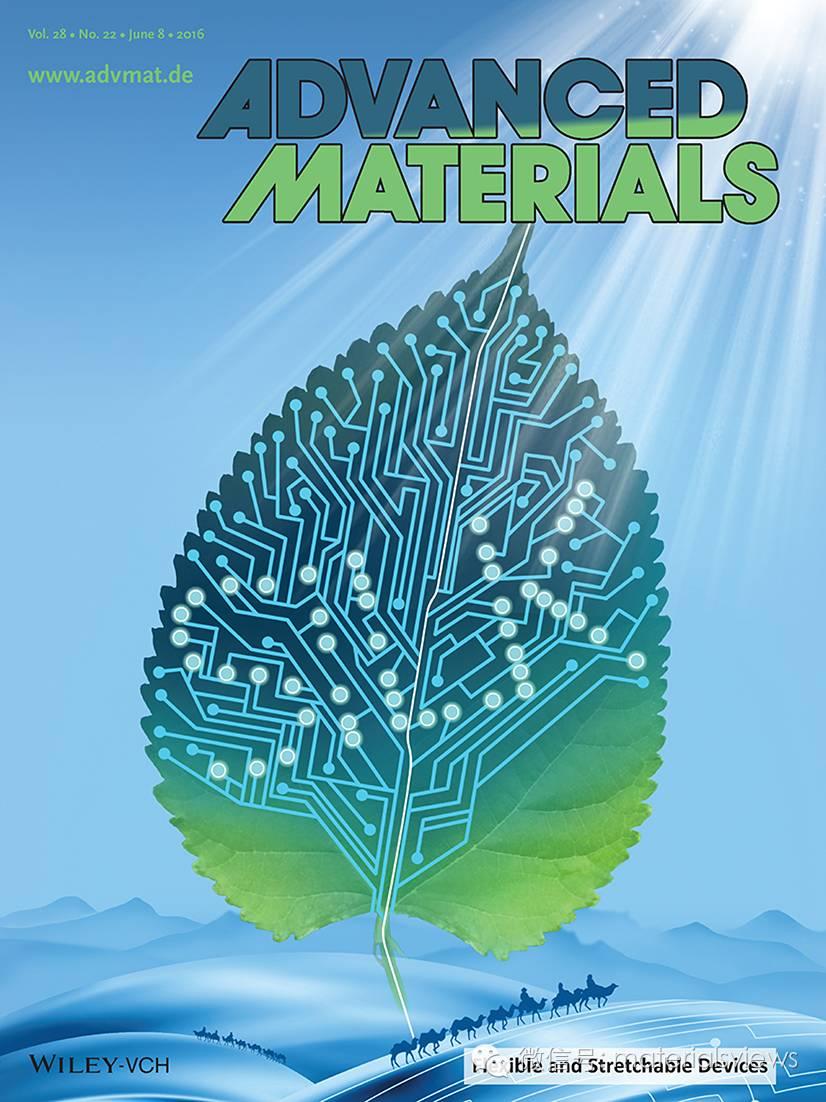 Advanced Materials 专刊:柔性及可拉伸器件