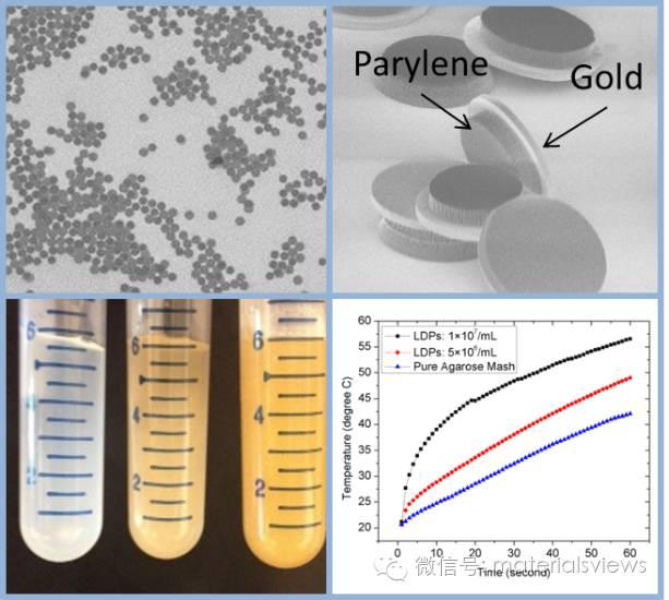 基于纳米工艺的微纳米颗粒在微波选择性定域肿瘤热疗领域的应用