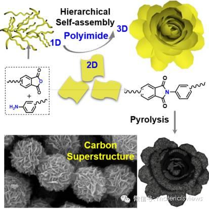 溶液自组装制备花状多级结构碳材料