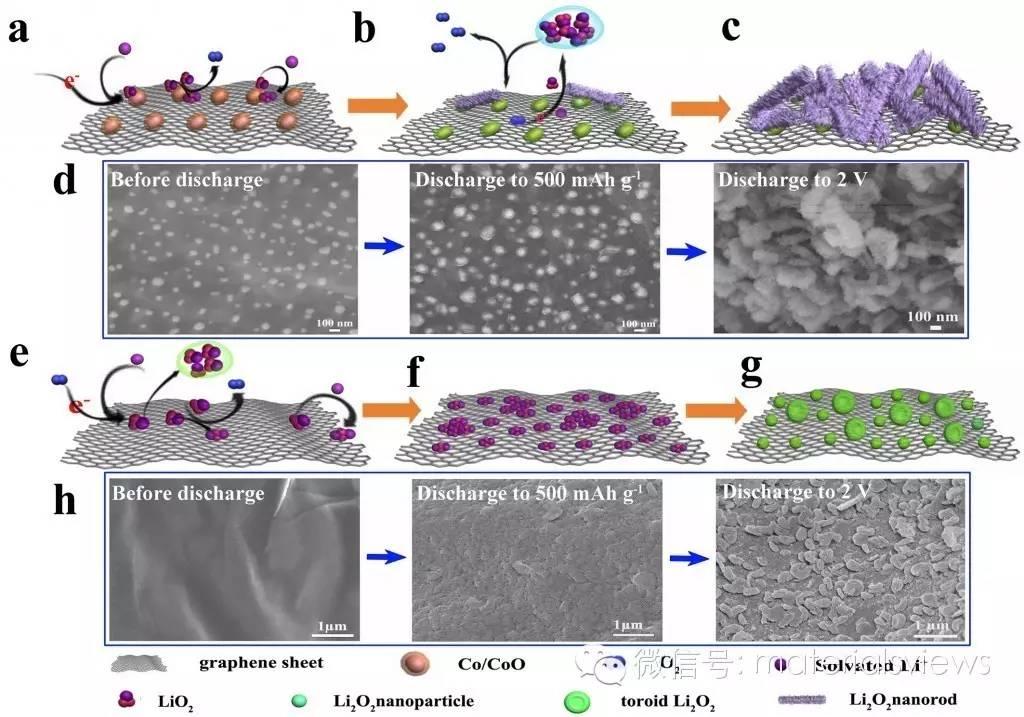 三维Co/CoO-石墨烯-碳化海绵锂氧电池正极材料的构筑