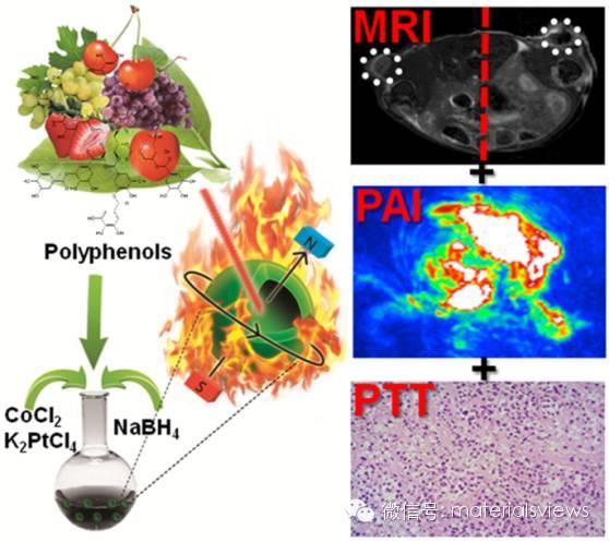 CoPt合金空心纳米球的绿色合成及其在癌症诊疗中的应用研究
