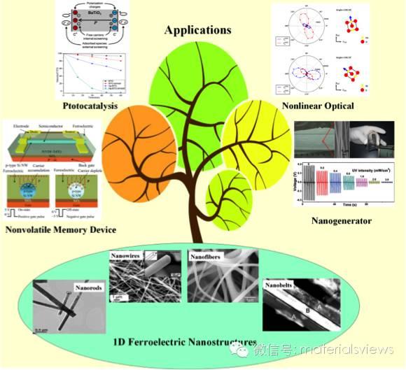 一维铁电纳米结构:合成,性质与应用