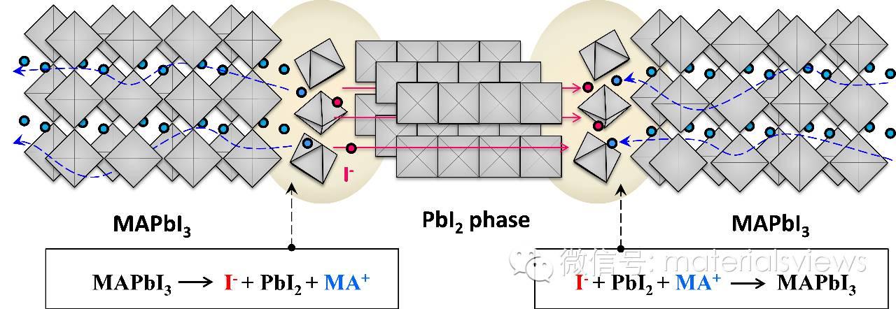固态MAPbI3钙钛矿薄膜中的碘离子移动及电场驱动的MAPbI3-PbI2可逆转变