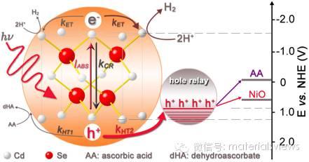 量子点表面修饰空穴传输单元:提高光解水制氢效率的新途径