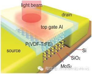 【邀稿】当传统铁电材料遇见新型二维材料:光电探测的新思路