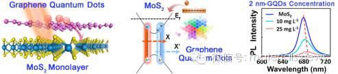 利用石墨烯量子点实现二硫化钼单层的光致荧光调控