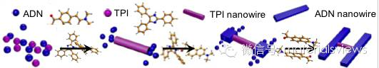 """H""型纳米线异质结的可控组装及其光子学应用"