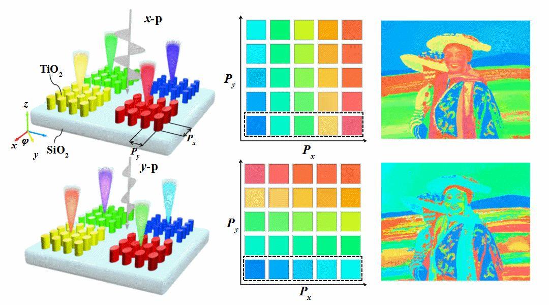 Advanced Optical Materials:基于TiO2全电介质超表面的结构色色调与饱和度调控