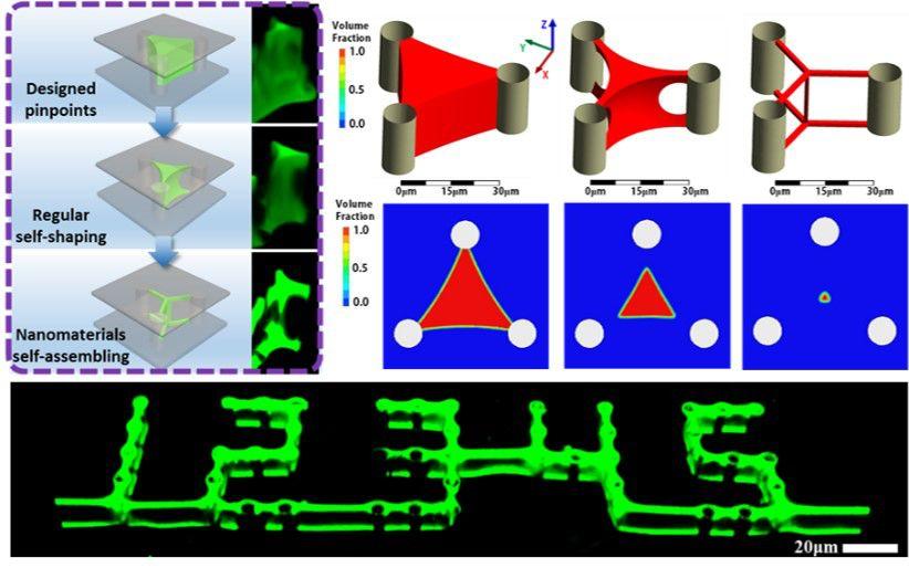 Advanced Materials:印刷制造三维复杂微纳结构及功能器件
