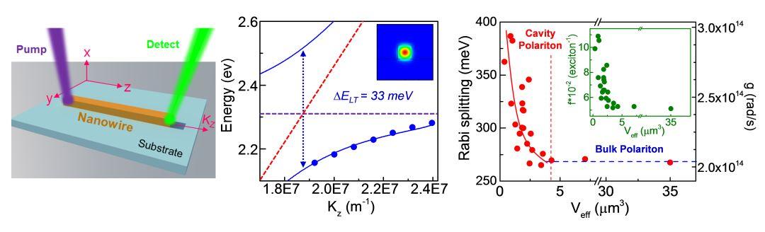 Advanced Optical Materials:有机-无机杂化钙钛矿纳米线中光子-激子强耦合相互作用