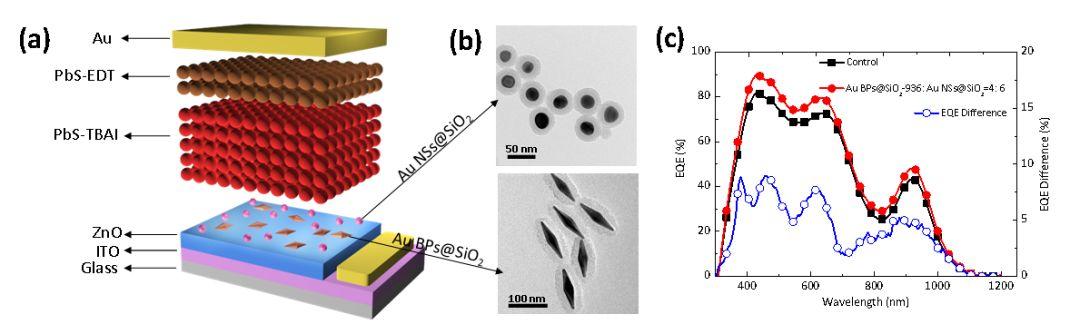 Advanced Energy Materials:光与电如影随形——金双锥和金球协同增强PbS量子点太阳能电池
