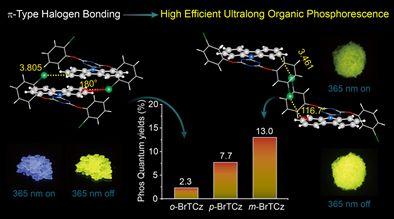 Advanced Functional Materials: 高效率超长有机磷光