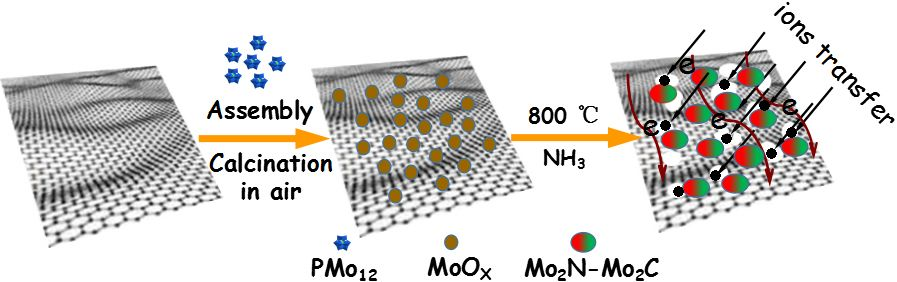 Advanced Materials:原位构建多孔还原氧化石墨烯担载的氮、碳化钼异质结用与高效的电催化析氢