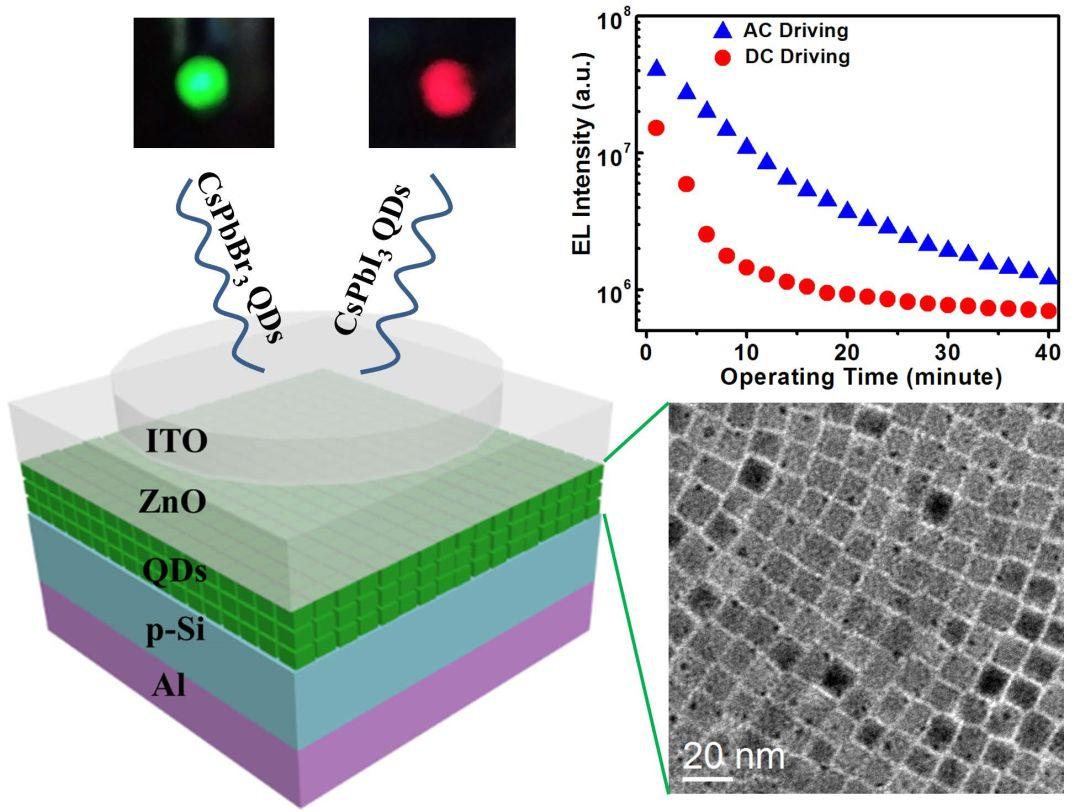 Advanced Optical Materials:面向未来光电集成的硅基全无机钙钛矿量子点异质结发光二极管