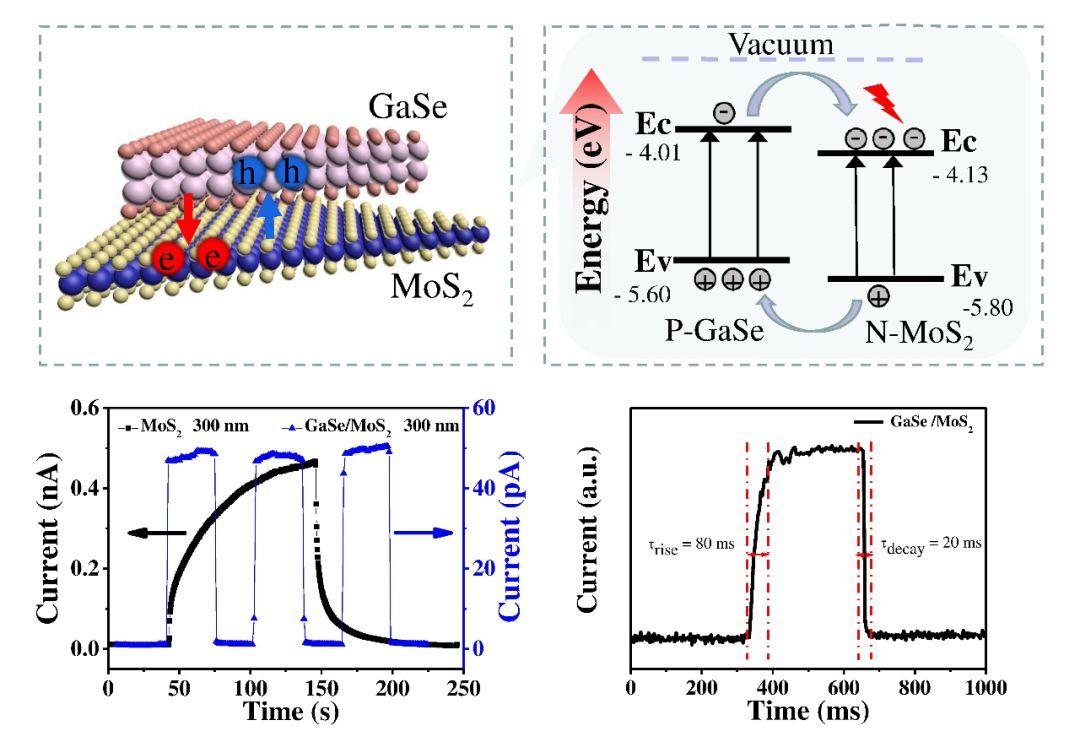 Small:利用范德华外延p-GaSe/n- MoS2面间PN结提升MoS2 的光探测性能