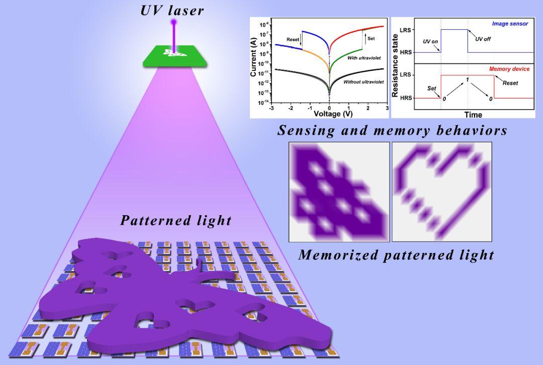 Advanced Materials:柔性人工视觉感知与存储系统