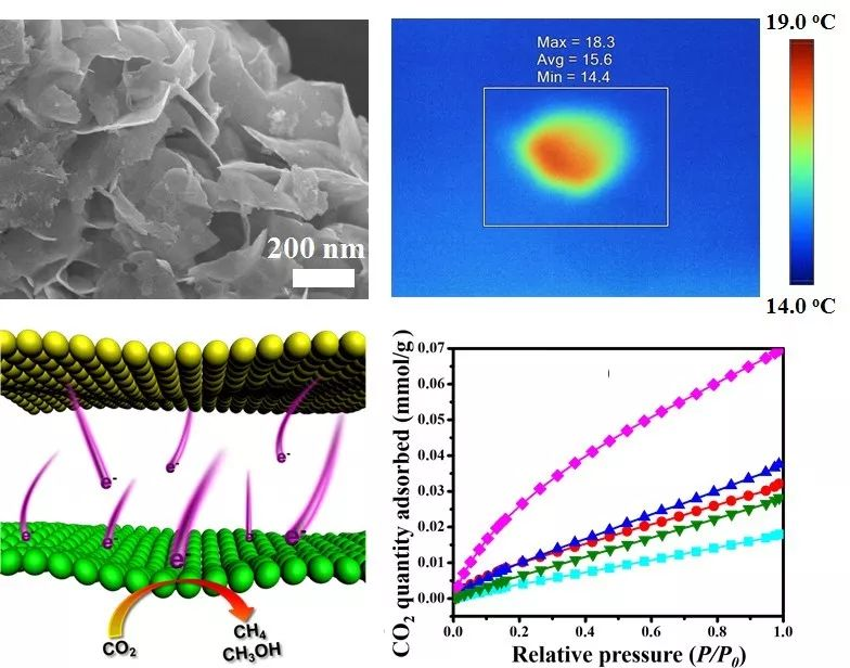Adv. Funct. Mater. : 新型二维异质结光催化材料:超薄MXene/Bi2WO6纳米片用于光催化CO2还原