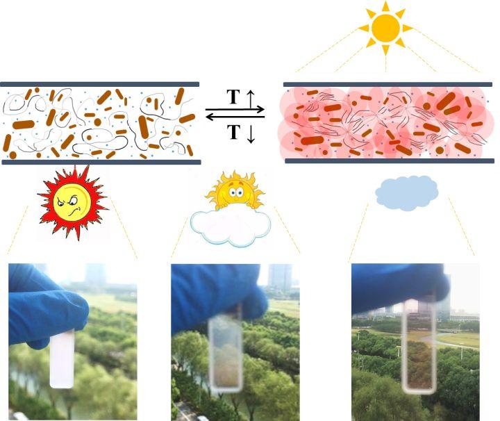 太阳光驱动的自变色多彩智能窗