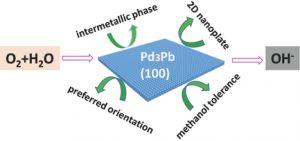 Small Methods::金属间结构的二维PdPb纳米片增强氧还原电催化活性和稳定性