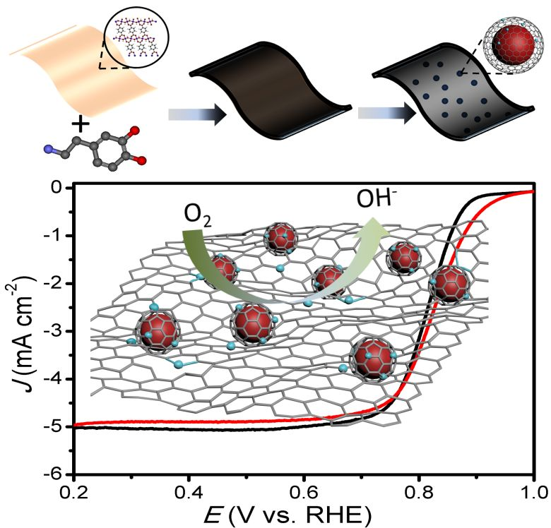 Small:Co-N-C纳米电催化剂的构筑及其同步辐射吸收谱研究