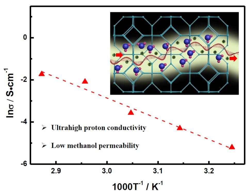 Advanced Materials:具有高质子电导率和低甲醇渗透率的DNA修饰的ZIF-8薄膜