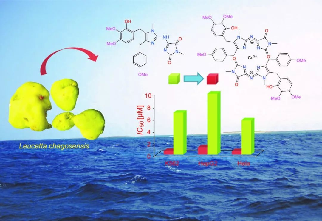 柠檬海绵中的生物碱金属离子络合物