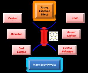 Advanced Optical Materials:二维半导体二硫化钨纳米材料光学特性的综述与展望