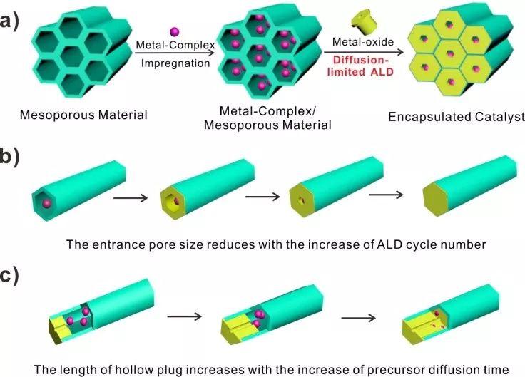 均相催化剂多相化取得新进展:扩散限制原子层沉积调控分子筛孔口直径